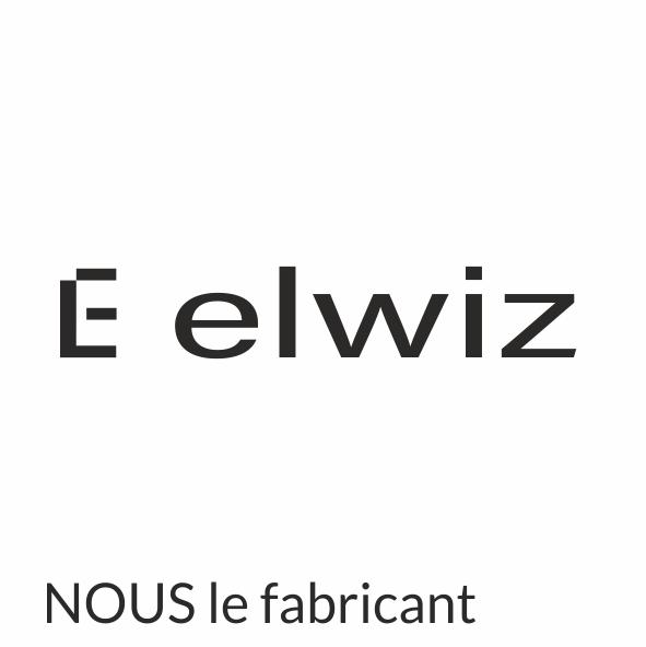 Elwiz.png